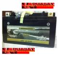 Batería de Gel para Moto YTZ10S